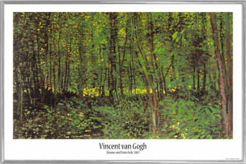 vincent van gogh poster kunststoff rahmen silber 91x61cm p8uk ebay. Black Bedroom Furniture Sets. Home Design Ideas