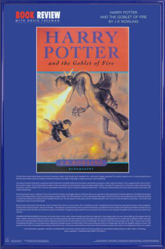 thesis harry potter