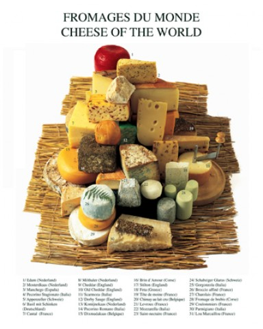 Cheese - Cheese Of The World