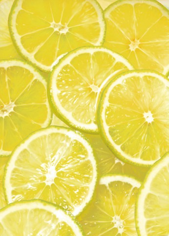 Cuisine - Lemon Slices, 2 Parts