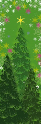 Christmas - Fir Trees In The Magic Forest