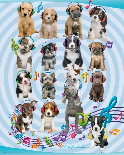 Hunde - Puppies Headphones, Keith Kimberlin