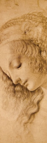 Leonardo Da Vinci - Head Of A Woman, Circa 1478