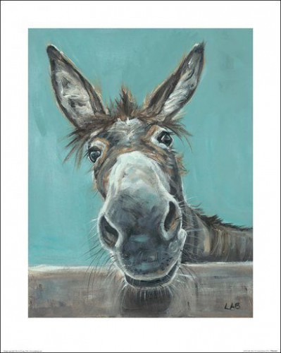 Donkeys - Well Hello There, Louise Brown