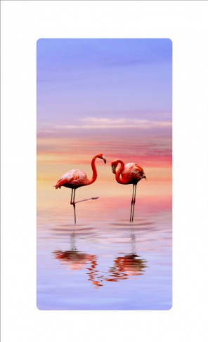 flamingos flamingo p rchen in pastellfarbenem sonnenaufgang am meer bilder auf acrylglas. Black Bedroom Furniture Sets. Home Design Ideas