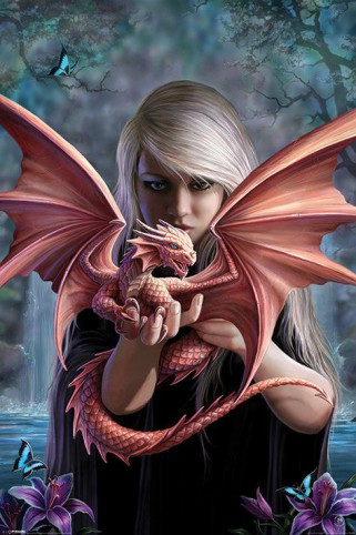 Gothic - Baby Of The Dragonkin, Anne Stokes