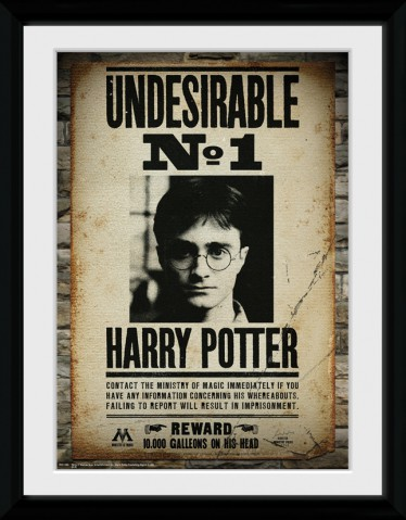 Harry Potter - Undesirable No 1, Daniel Radcliffe