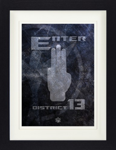 Logos - Enter District 13