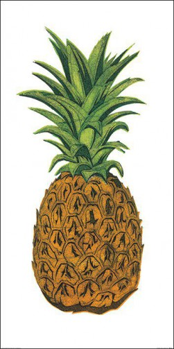Cuisine - Pineapple, Barry Goodman