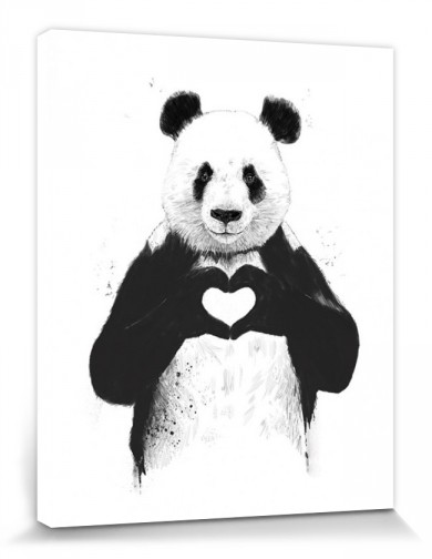 Pandas - All You Need Is Love, Balazs Solti