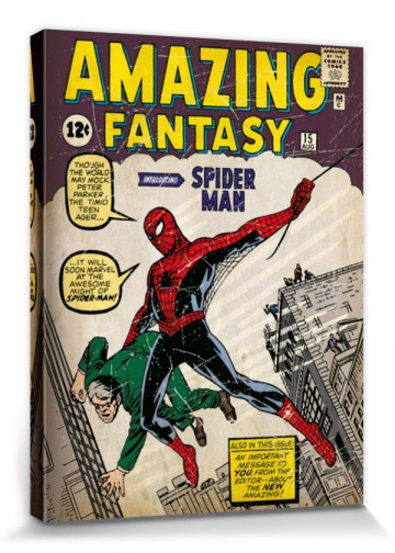 Spider-Man - Erstausgabe, Amazing Fantasy