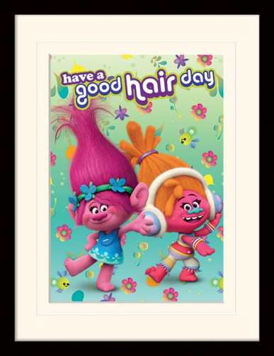 Trolls - Have A Good Hair Day