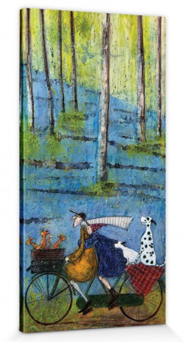 sam toft mr mustard dogs and cats on a bike trip in the woods