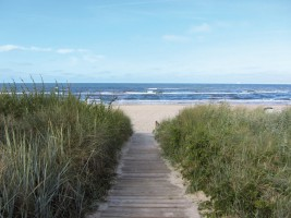 Beaches - Path To The Ocean, 2 Parts