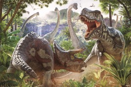 Dinosaur - T Rex And Triceratops, Dangerous Encounter