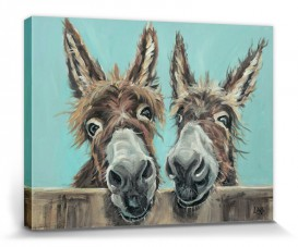 Donkeys - Double Trouble, Louise Brown