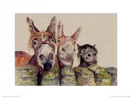 Donkeys - Johnny, Freckles & Halfpint, Jane Bannon