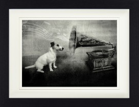 Hunde - His Master's Voice, Jack Russell Terrier