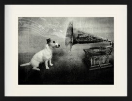 Dogs - His Master's Voice, Jack Russell Terrier