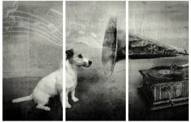 Dogs - His Master's Voice, Jack Russell Terrier, 3 Parts