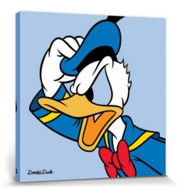 Donald Duck - Profil