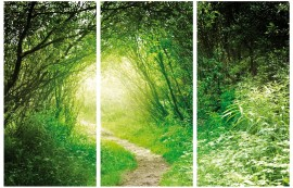 Forests - Deep Green Forest, Into The Light, 3 Parts