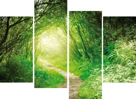 Forests - Deep Green Forest, Into The Light, 4 Parts