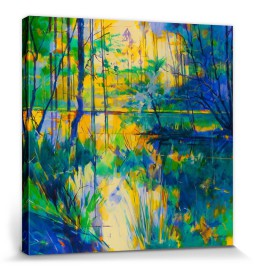 Forests - Sunlight On Meadowcliff Pond, Doug Eaton