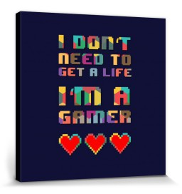 Gaming - I Don't Need To Get A Life, I'm A Gamer