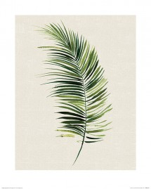 Leaves - Tropical Leaf II, Summer Thornton