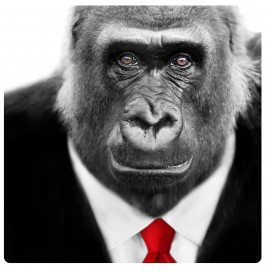 Affen - Gorilla In Suit