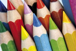 Pencils - Colour Pencil Tops, Close Up