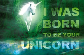 Unicorns - I Was Born To Be Your Unicorn, Green Magic Forest