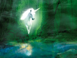 Unicorns - Unicorn In The Magic Green Forest, 2 Parts