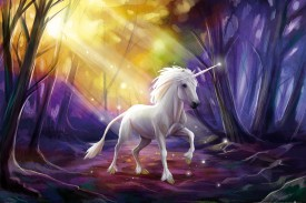 Unicorns - Unicorn In The Magic Forest