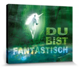 Unicorns - Du Bist Fantastisch