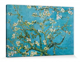Vincent Van Gogh - Almond Blossoms, 1890
