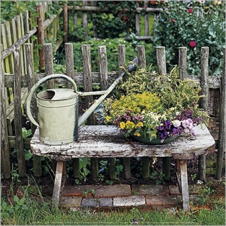 flowers garden bench tin watering can poster. Black Bedroom Furniture Sets. Home Design Ideas